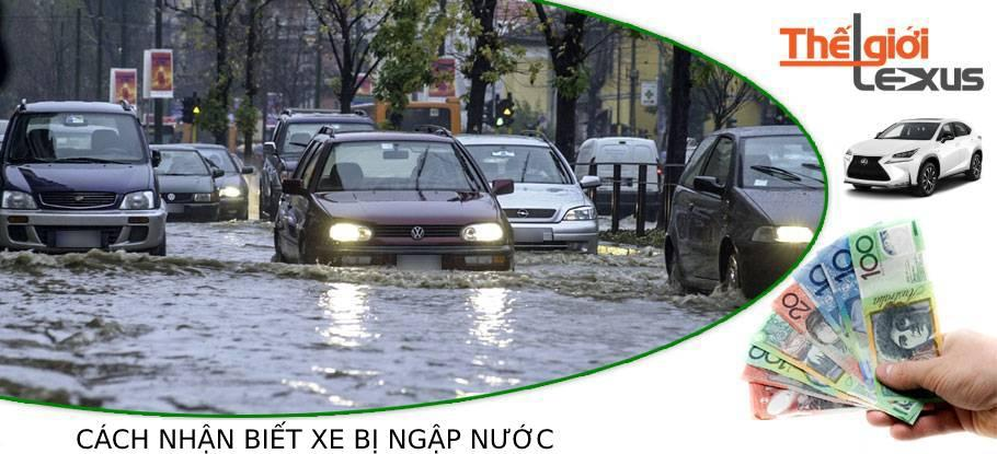 Cách nhận biết xe bị ngập nước cho người mua xe sang cũ
