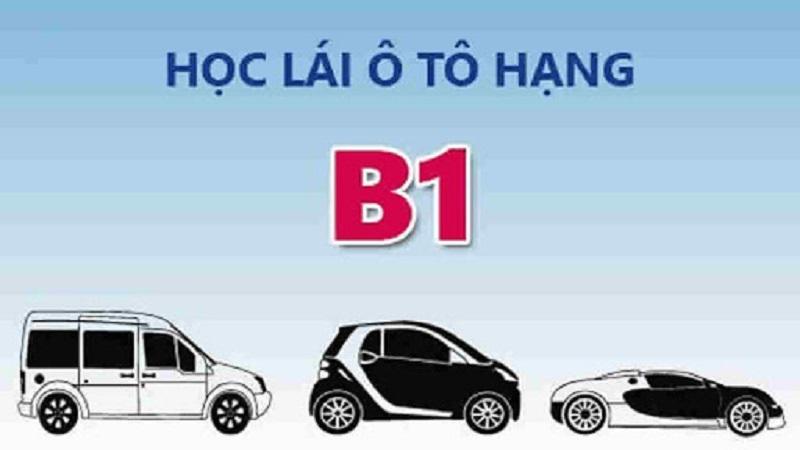 Những phương tiện được phép lái khi có bằng B1